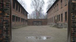 Made in Auschwitz – The Untold Story of Block 10